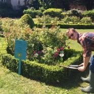 Mudlarks gardening